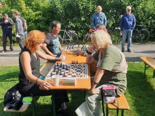 Schach im Park 18.9.2021 (1)